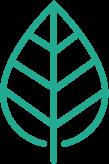 Genius Zone leaf - Aqua