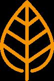 Genius Zone leaf - Orange
