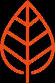 Genius Zone leaf - Red